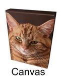 Nr.140 Canvas ingespannen vanaf € 15,00_